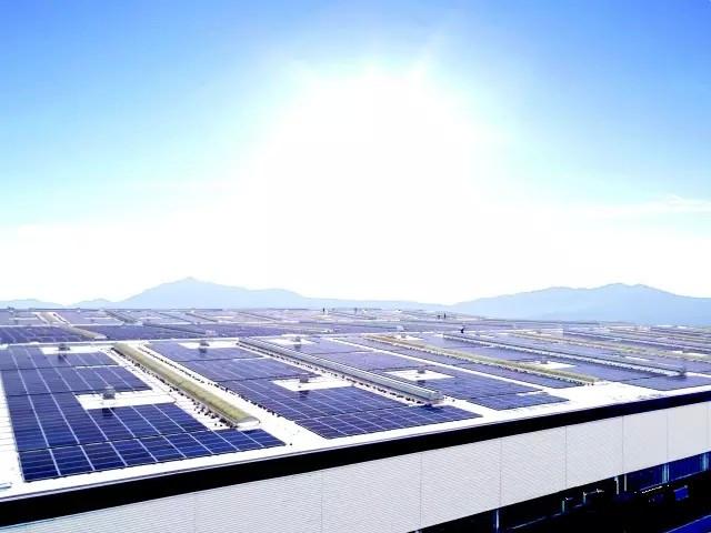 浙江卫视聚焦桑尼能源余杭区企业屋顶光伏发电项目
